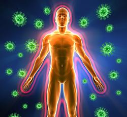 Как укрепить иммунитет: старые и новые факты