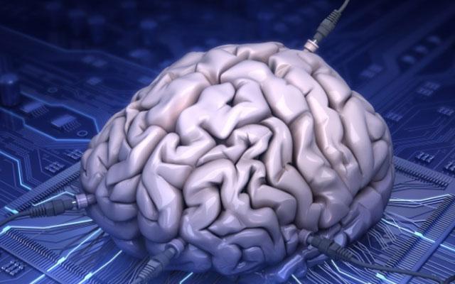 Мифы и факты о работе человеческого мозга