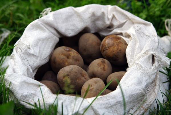 Мешок картошки (притча)