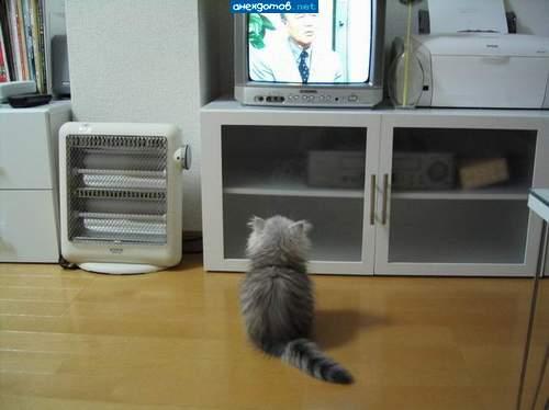 8 причин перестать смотреть телевизор
