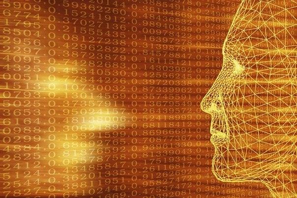 60 простых советов для улучшения работы мозга