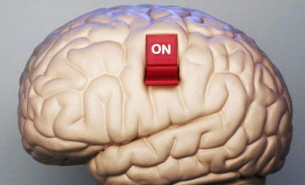 Включи мозги на полную катушку. Упражнения для развития мозга.