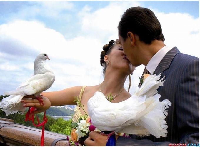 Услуги свадебных агентств сегодня