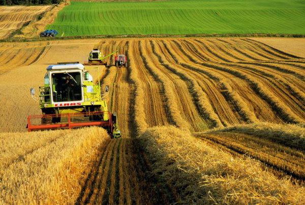 Трактора в сельском хозяйстве на dt-75.com