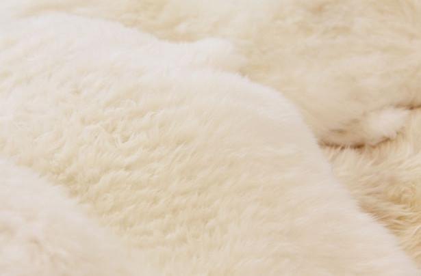 Почему овчина пользуется такой популярностью на рынке меховых изделий
