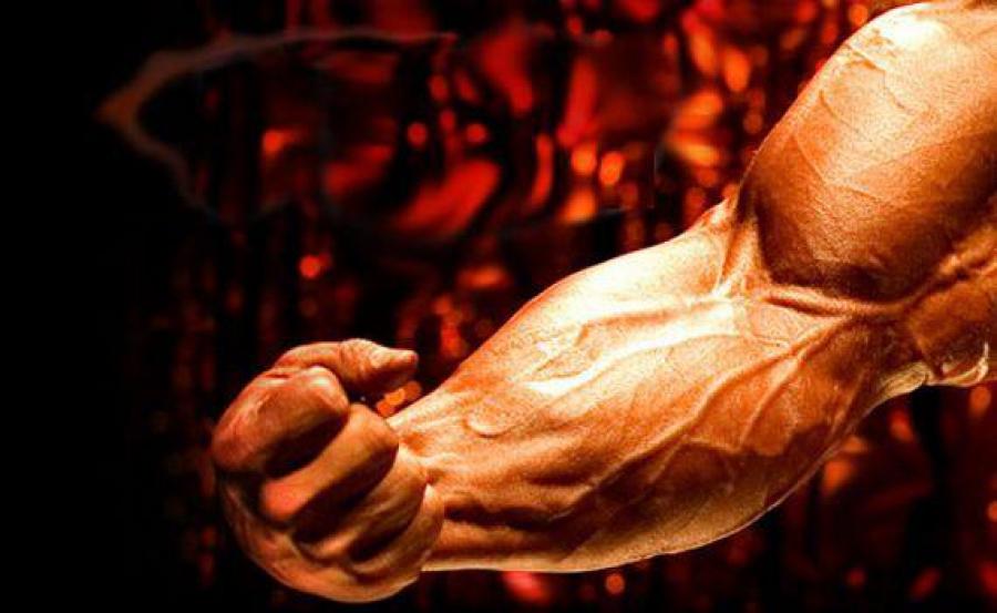 Почему не стоит принимать протеин? - Отвечает эксперт Atletic-Food.ru